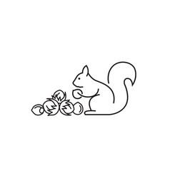 Icon of squirrel vector