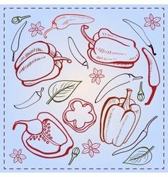 Pepper vintage vector