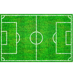 Soccer field with marking lines on grass texture vector