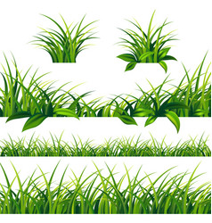 spring green grass borders set vector image