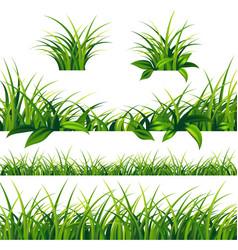 spring green grass borders set vector image