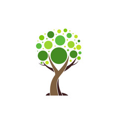 tree abstract logo concept plant nature icon vector image