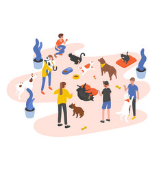 group people or volunteers feeding pets and vector image