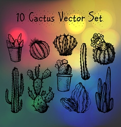 Hand Drawn Isolated actuses Set vector image