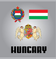Official government elements of hungary vector