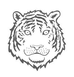 Tiger face or head hand drawn tiger head animal vector