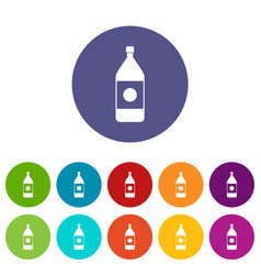 vinegar bottle icons set flat vector image