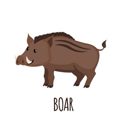 cute wild boar in flat style vector image vector image