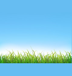 blue sky background with green grass vector image