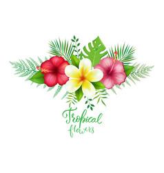 Bouquet exotic tropical flowers vector