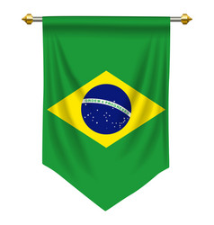 brazil pennant vector image