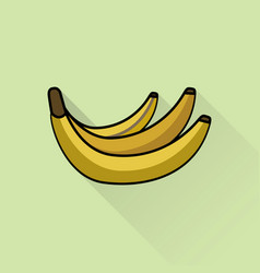 brunch of bananas flat style vector image