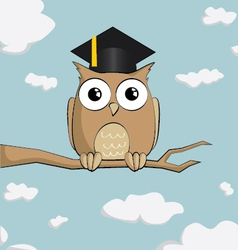 Graduated cute cartoon owl vector