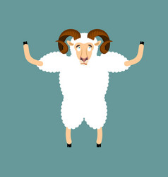 ram confused emotions sheep is perplexed farm vector image