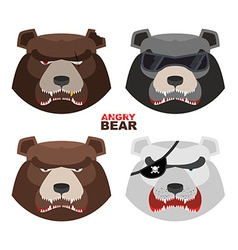 Set angry bears For logo and emblem sport club vector image