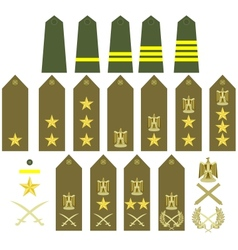 Egyptian army insignia vector image vector image