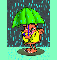 angry cat and rain colored cartoon vector image