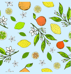 Seamless pattern with lemons oranges limes vector