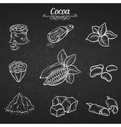 set hand draw decorative cocoa chocolate vector image