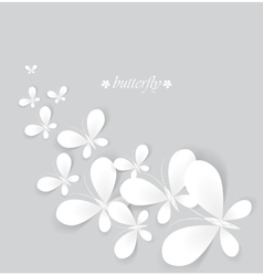 white butterflies vector image