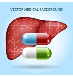 Liver puzzle and pills medical background vector image vector image