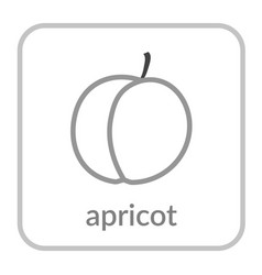 apricot icon gray peach outline flat sign vector image