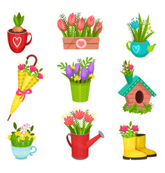 flat set of spring compositions beautiful vector image