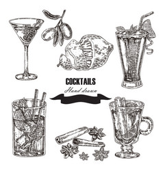 Hand drawn sketch cocktail set vector