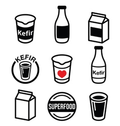 Kefir or kephir fermented milk product superfood vector image