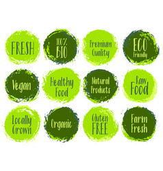 Organic labels bio emblems for products packaging vector