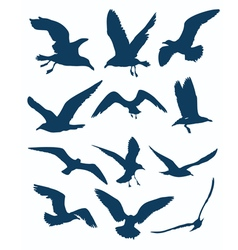 seagull silhouettes vector image vector image