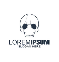 skull logo icon or skeleton vector image