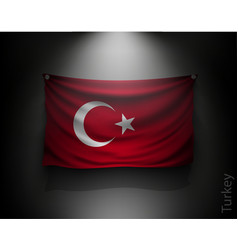 waving flag turkey on a dark wall vector image