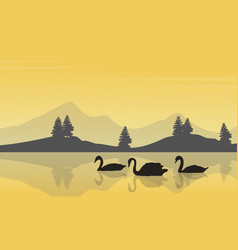 collection stock of swan on lake silhouettes vector image