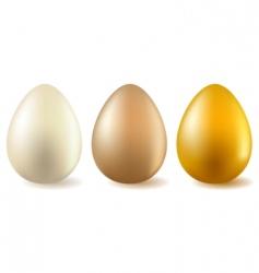 three realistic eggs vector image vector image