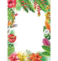 frame from tropical plants vector image
