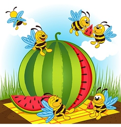 bees and watermelon vector image
