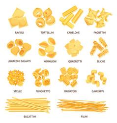 Italian pasta spaghetti fusilli and macaroni vector