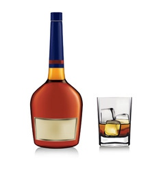Bottle and whiskey in glass vector