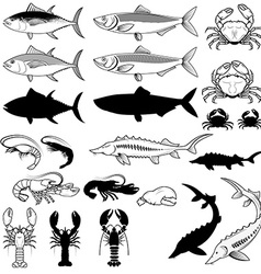 Set of the fish crabs shrimps lobsters design vector image