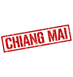 Chiang mai red square stamp vector