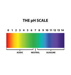 Colored ph scale rainbow - isolated vector