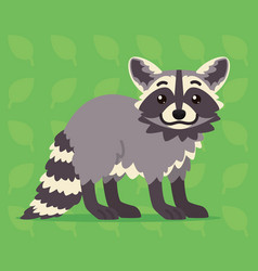 cute raccoon standing of a vector image