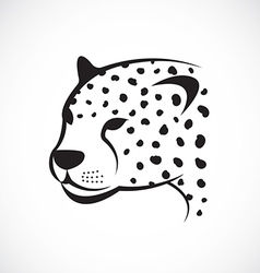 image an cheetah face on white background vector image