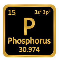 Periodic table element phosphorus icon vector