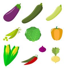 set of vegetables organic vegetarian healthy food vector image