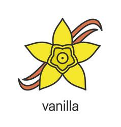 Vanilla flower color icon vector