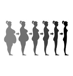 stages weight loss female figure vector image