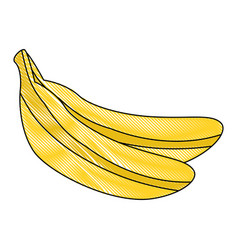 banana fruit icon vector image