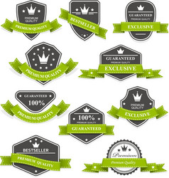 heraldic medals and emblems with ribbons vector image